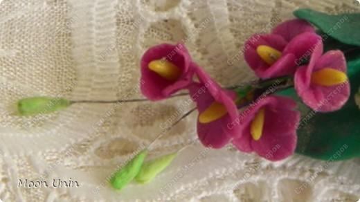 Заколочка сделана для племянницы, как украшение для вечерней прически. Были еще отдельные розочки на шпильках, но идея сделать их появилась  буквально в последний момент. Потому и на фотографирование времени не осталось. фото 3