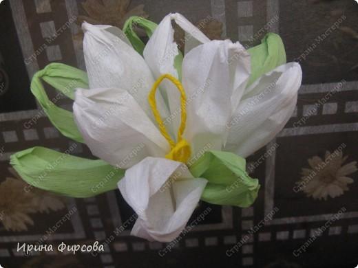 Сегодня вечером Ася приехала с турслёта, и привезла цветы!!!Мне они очень понравились. Я спросила Асю, помнит ли она, как делаются цветы, и Ася без промедления стала мне показывать. Так родился Мастер - класс от Асюши. фото 2