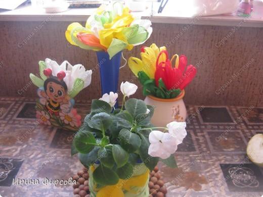 Сегодня вечером Ася приехала с турслёта, и привезла цветы!!!Мне они очень понравились. Я спросила Асю, помнит ли она, как делаются цветы, и Ася без промедления стала мне показывать. Так родился Мастер - класс от Асюши. фото 20