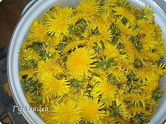 Понадобятся терпение и хорошое настроение и еще... 350-400 шт цветочков одуванчика, 2 кг сахарного песка, 1 литр воды холодной, 1 лимон или апельсин, 2 ч.лож лимонной кислоты фото 2