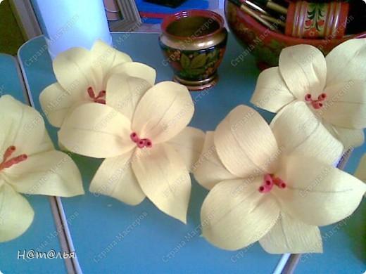 Такие лилии были сделаны для украшения музыкального зала в детском саду ( по книге http://stranamasterov.ru/litera/flowers.html?tid=67) фото 4