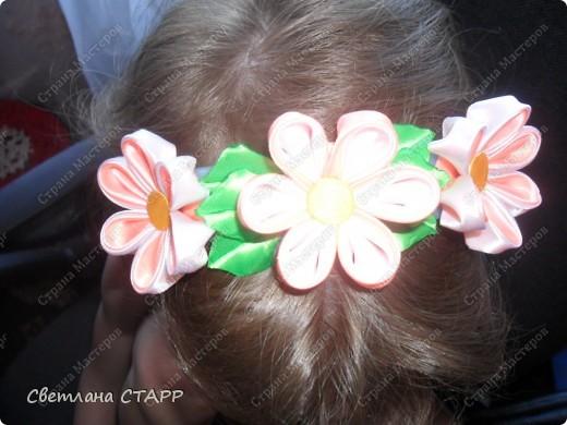Любовались с дочкой цветением шиповника-и белый и красный цветет! фото 3