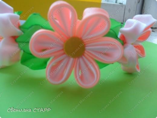 Любовались с дочкой цветением шиповника-и белый и красный цветет! фото 2