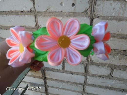 Любовались с дочкой цветением шиповника-и белый и красный цветет! фото 1