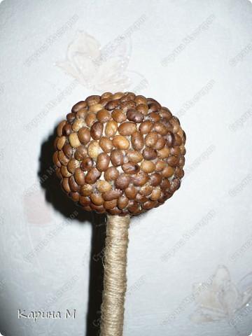 Вот оно мое первое кофейное деревце))) Давно заглядывалась на деревца, но на создание этого  сподвигла меня  Олисандра, http://stranamasterov.ru/node/198508. За что ей огромное СПАСИБО)))) фото 5