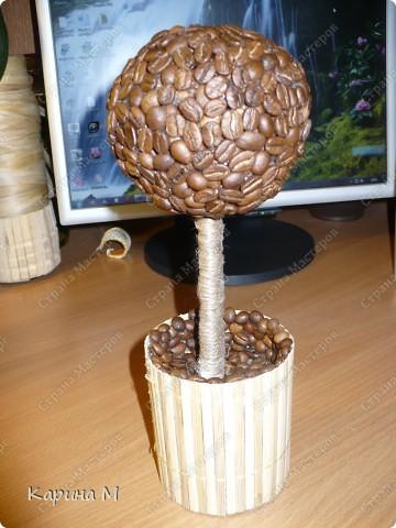 Вот оно мое первое кофейное деревце))) Давно заглядывалась на деревца, но на создание этого  сподвигла меня  Олисандра, http://stranamasterov.ru/node/198508. За что ей огромное СПАСИБО)))) фото 7
