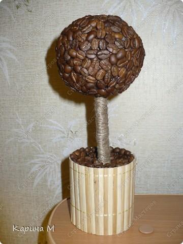 Вот оно мое первое кофейное деревце))) Давно заглядывалась на деревца, но на создание этого  сподвигла меня  Олисандра, http://stranamasterov.ru/node/198508. За что ей огромное СПАСИБО)))) фото 1