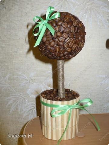 Вот оно мое первое кофейное деревце))) Давно заглядывалась на деревца, но на создание этого  сподвигла меня  Олисандра, http://stranamasterov.ru/node/198508. За что ей огромное СПАСИБО)))) фото 2