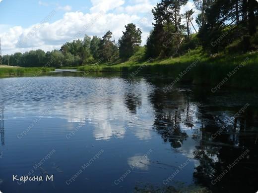 Природа Нижней Тавды фото 28