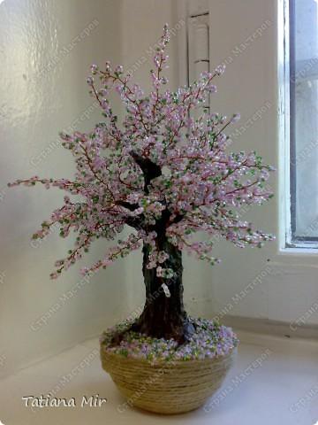 Tatiana Mir.  Это моя первая работа в технике бисероплетения.  Училась делать дерево из бисера на этом сайте, для...