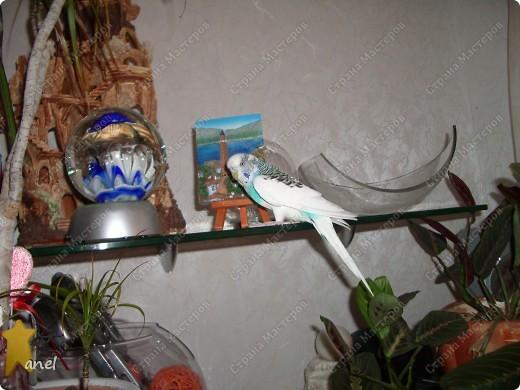 По этому М.К. сделала вот такую открыточку  http://stranamasterov.ru/node/57010  Обычный стеклянный камушек я обклеила с обратной стороны маленьким кусочком салфетки с рисунком,смотрится очень интересно! фото 12