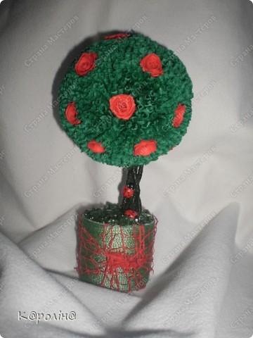 Моє деревце фото 5