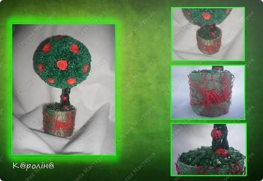 Моє деревце фото 1