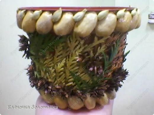 декор фисташками и листьями и цветами туи фото 5