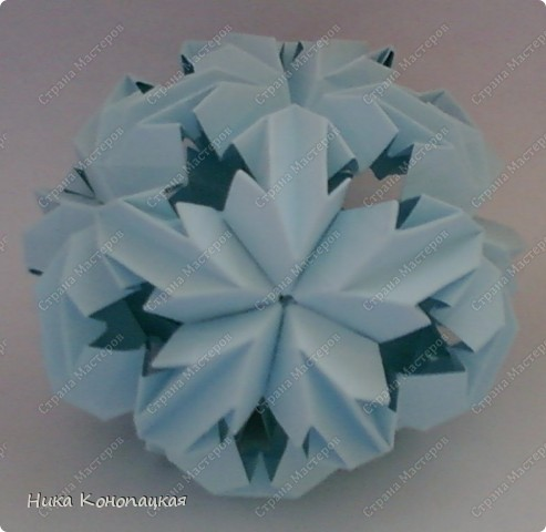 Name: Chrysanthemum