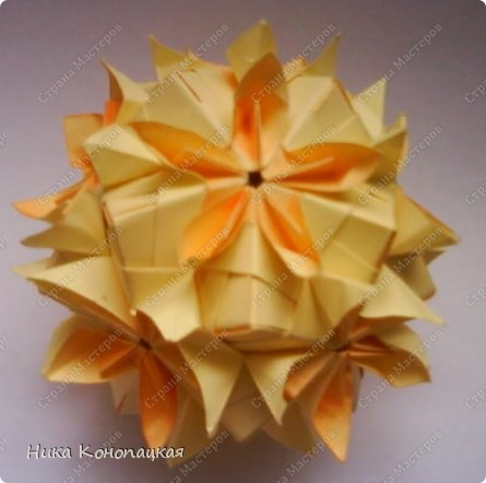 Name: Double Flower