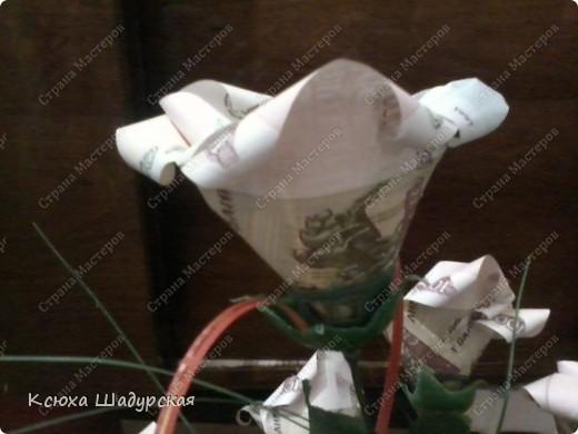 денежный бутончик. фото 1