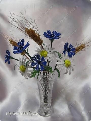 Такой полевой букет вырос у меня. Сейчас на полях цветет много ромашек, васильков. Уже начинает созревать пшеница.  фото 2