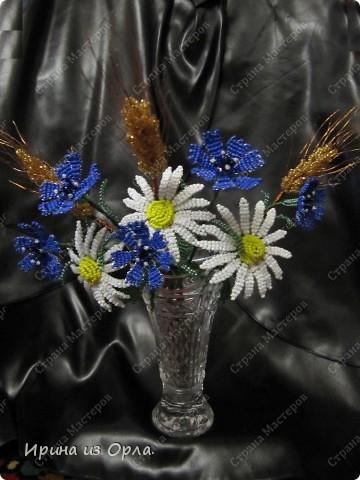 Такой полевой букет вырос у меня. Сейчас на полях цветет много ромашек, васильков. Уже начинает созревать пшеница.  фото 3