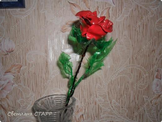 Вот такую розу я сделала из пластиковой бутылки! фото 1