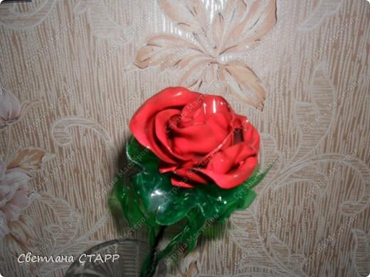 Вот такую розу я сделала из пластиковой бутылки! фото 2