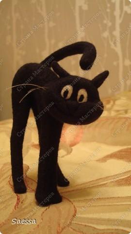 Кот Васька фото 5