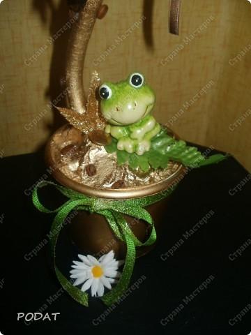 моё первое кофейное деревце.я добавила к нему монети чайных роз.выкрасила горшок и ствол золотой краской.получилось не плохо!!! фото 2