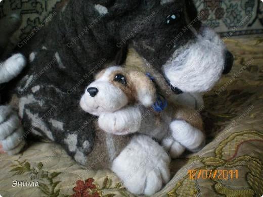 Вот таких пёсиков сваляла моя сестра. фото 7