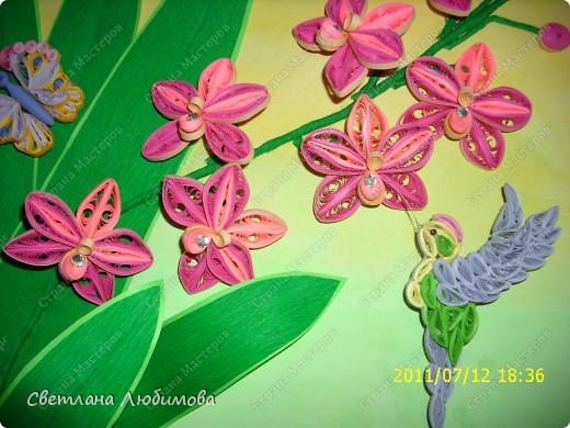 Очередная работа родилась под впечатлением картины Ольги Ольшак! Олечка спасибо за твои шедевры! На этом фото колибри можно рассмотреть получше. фото 1