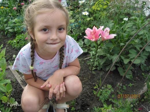 """наш газон """"Восточный орнамент"""". фирма Экзотика. 22 цветка, газон меняет свой облик в течение всего лета,сейчас он такой) никогда не видела раньше белые и розовые маки) фото 13"""