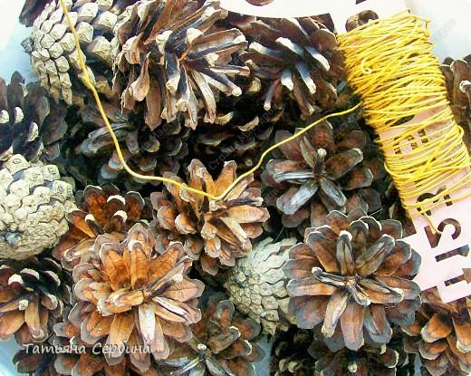 Корзина из сосновых шишек. фото 2