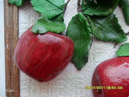 Большое спасибо Марине Архиповой за мк по яблочкам,очень боялась начинать расписывать ядлочки,думала ну точно не получатся,но так они мне нравились фото 5