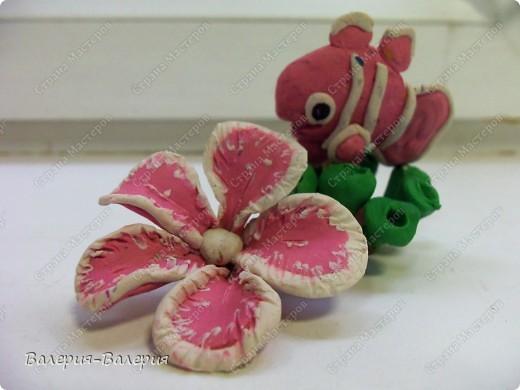 Пластилиновый осьминожек фото 8