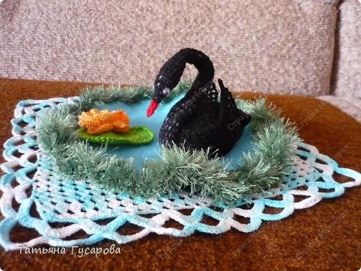 Лебедь на пруду фото 3