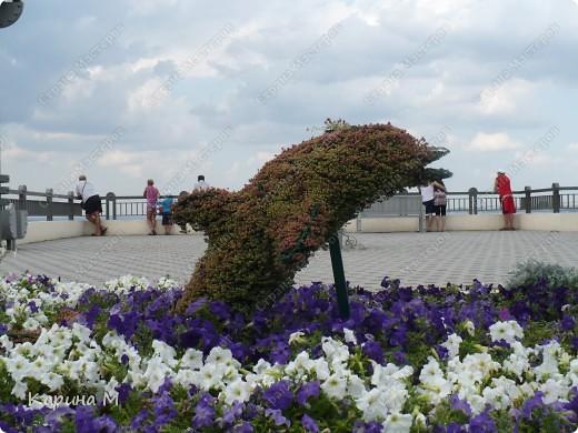 Центральный пляж, июль 2011 г. фото 6