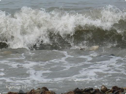 Море, чайка и закат... фото 8