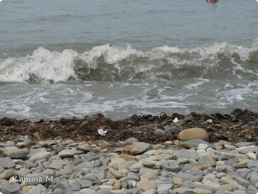 Море, чайка и закат... фото 9