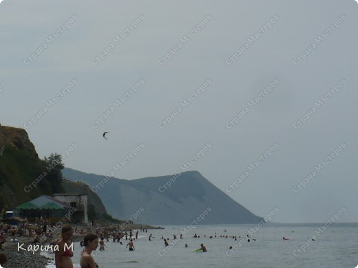 Море, чайка и закат... фото 11