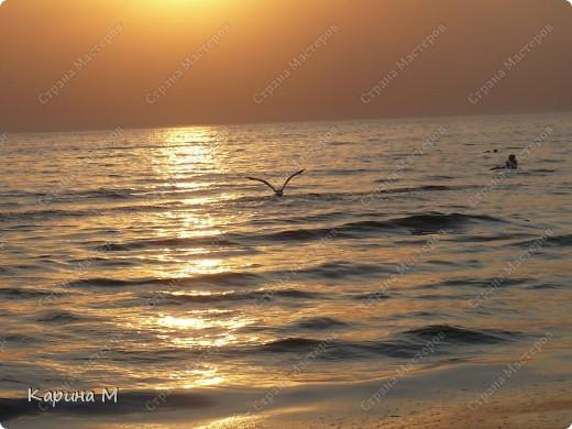 Море, чайка и закат... фото 40