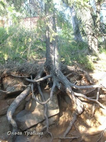 Продолжаю свой фоторепортаж о круизе, первую часть можно посмотреть здесь http://stranamasterov.ru/node/221503. Это Онежское озеро, добрались мы до о. Кижи, на котором располагается музей деревянного зодчества. фото 17