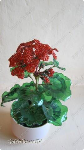 В последнее время полюбила герани. Сейчас они обильно цветут, а вот зимой цветов почти нет, моя искусственная герань будет цвести постоянно. фото 11