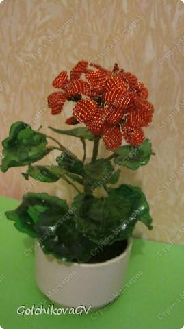 В последнее время полюбила герани. Сейчас они обильно цветут, а вот зимой цветов почти нет, моя искусственная герань будет цвести постоянно. фото 1