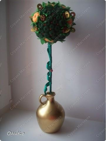 """Первый заказ """"Мандариновое дерево"""" (денежное дерево) фото 3"""