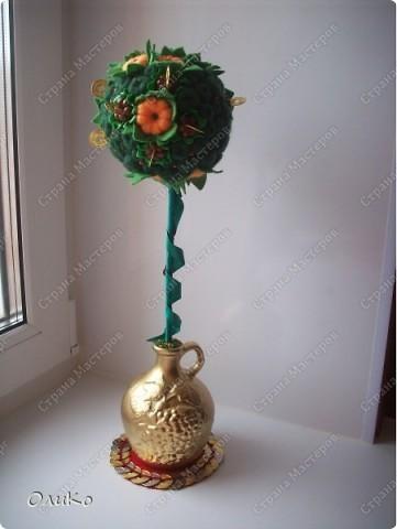 """Первый заказ """"Мандариновое дерево"""" (денежное дерево) фото 1"""