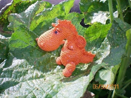 Теперь и у меня живет крошка-дракошка. Создавался на саду, дождливым днём из подручных материалов. Бабуля дала хорошие нитки, крючок и бусины нашла в сумке, описание как вязать было записано в ежедневнике.  фото 10