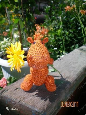 Теперь и у меня живет крошка-дракошка. Создавался на саду, дождливым днём из подручных материалов. Бабуля дала хорошие нитки, крючок и бусины нашла в сумке, описание как вязать было записано в ежедневнике.  фото 4