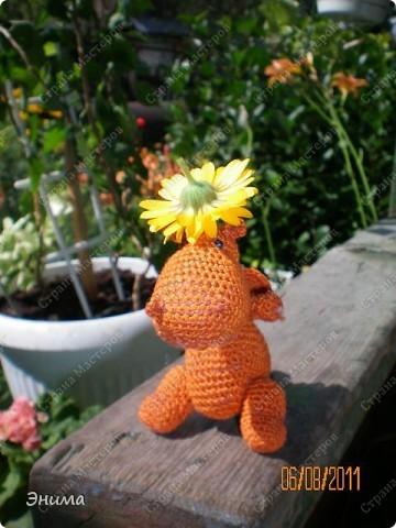 Теперь и у меня живет крошка-дракошка. Создавался на саду, дождливым днём из подручных материалов. Бабуля дала хорошие нитки, крючок и бусины нашла в сумке, описание как вязать было записано в ежедневнике.  фото 5