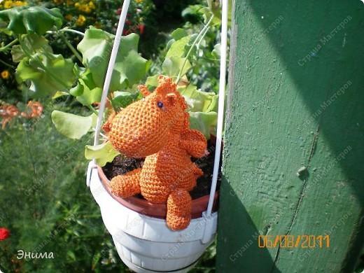 Теперь и у меня живет крошка-дракошка. Создавался на саду, дождливым днём из подручных материалов. Бабуля дала хорошие нитки, крючок и бусины нашла в сумке, описание как вязать было записано в ежедневнике.  фото 11