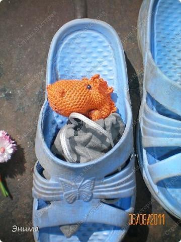 Теперь и у меня живет крошка-дракошка. Создавался на саду, дождливым днём из подручных материалов. Бабуля дала хорошие нитки, крючок и бусины нашла в сумке, описание как вязать было записано в ежедневнике.  фото 7