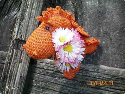 Теперь и у меня живет крошка-дракошка. Создавался на саду, дождливым днём из подручных материалов. Бабуля дала хорошие нитки, крючок и бусины нашла в сумке, описание как вязать было записано в ежедневнике.  фото 16
